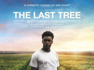Trailer: The Last Tree – identity and belonging, from rural Lincolnshire to inner London