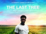 The Last Tree (Sundance London)