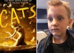 Cats – kids' review!